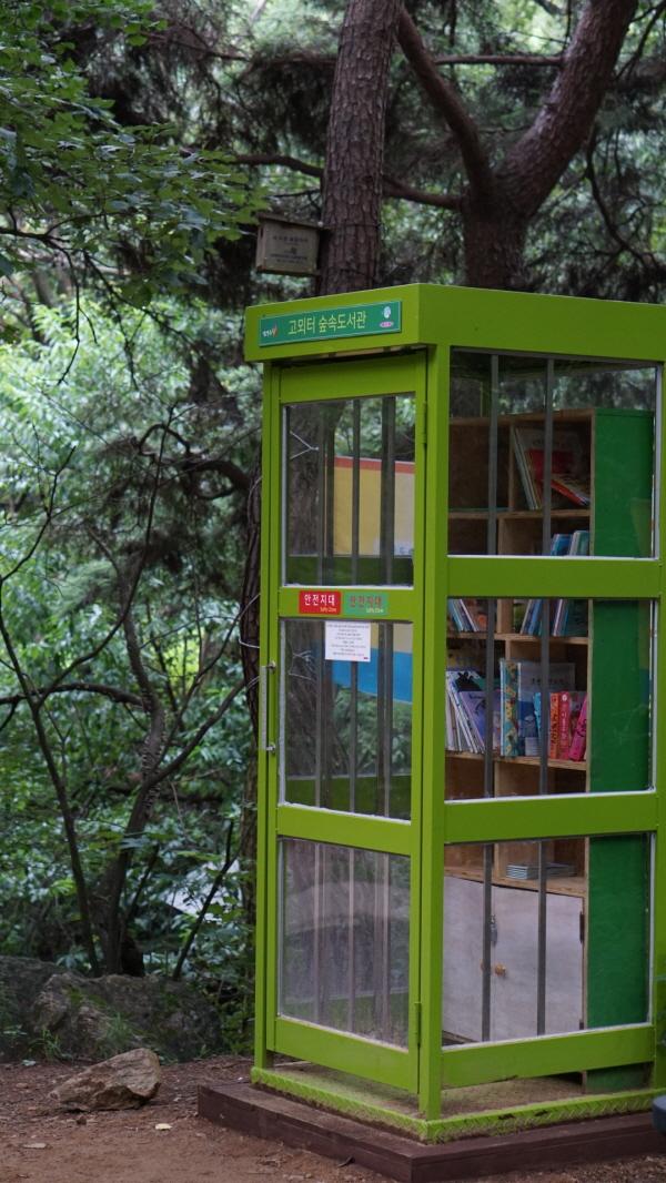 [포토에세이-천마산] 산은 도서관