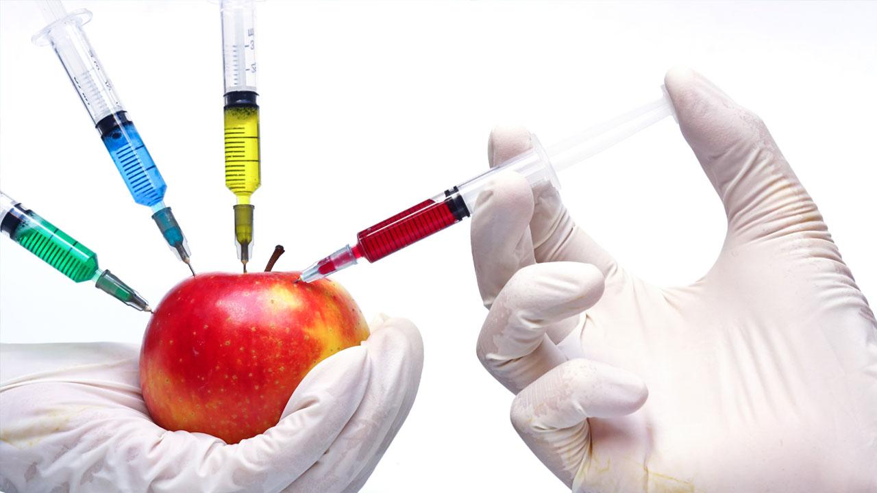 노벨상 수상자들이 'GMO'를 지지하는 이유