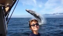 '고래야 사진 찍자'...절묘한 순간 포착