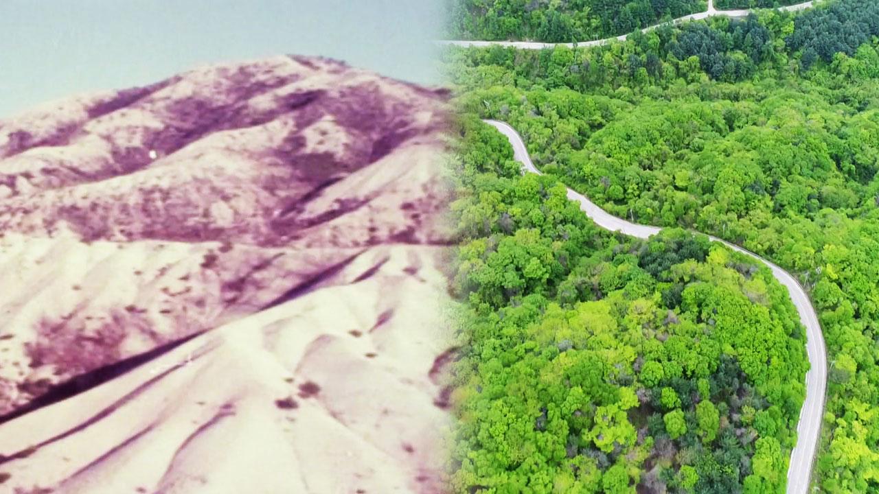 민둥산의 기적...이제는 일자리·복지 산림으로