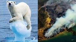지구 평균 온도가 '2도' 오르면 벌어질 재앙