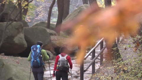 등산 사고 '단풍철' 최다…오후 1시~3시 '집중'
