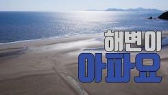 [자막뉴스] 천연기념물 해변이 아파요