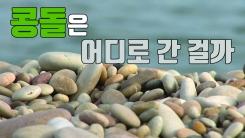 [자막뉴스] 사라지는 자연 유산...백령도 콩돌 해변