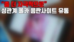 """[자막뉴스] """"좀 더 자극적으로"""" 성관계 몰카 음란사이트 유통"""