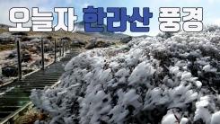 [자막뉴스] '상고대 장관' 10월 한라산 풍경