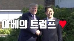 [자막뉴스] 아베의 극진한 트럼프 사랑