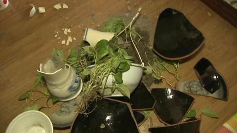 경주 이어 포항…영남서 지진 잇따른 이유