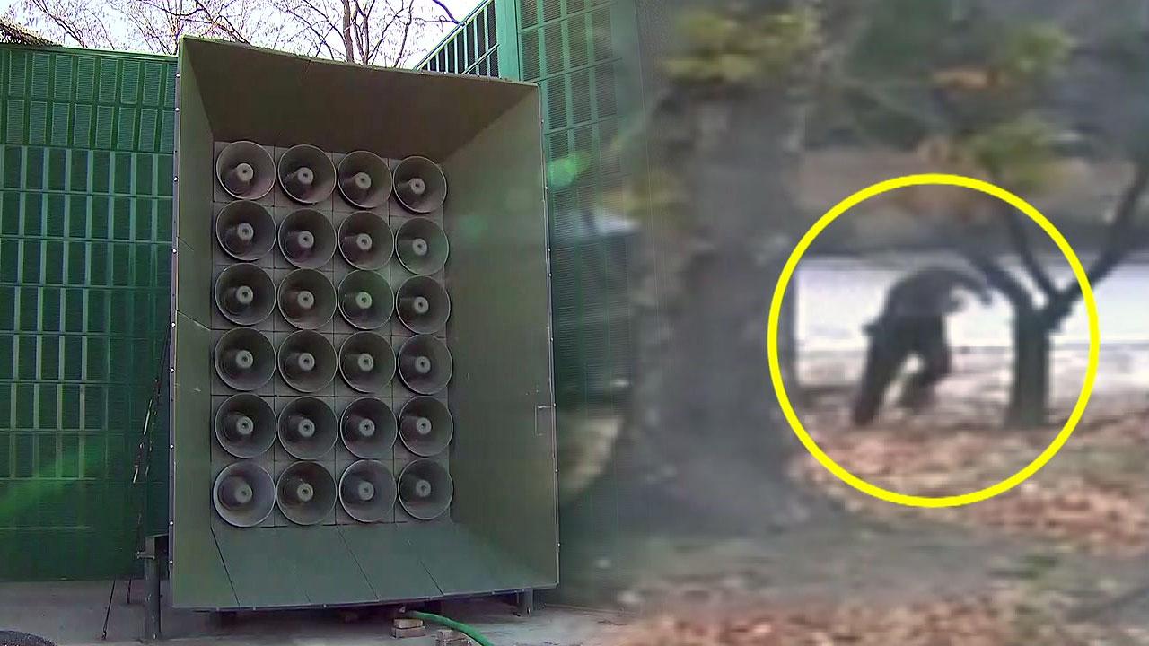 [취재N팩트] 북한군 귀순 알리는 대북확성기, 효과있나?