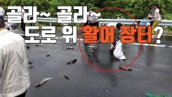[자막뉴스] 도로 한가운데 펼쳐진 활어 직거래 장터?!