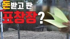 [자막뉴스] 금품 받고 신병에게 표창장 준 부대?
