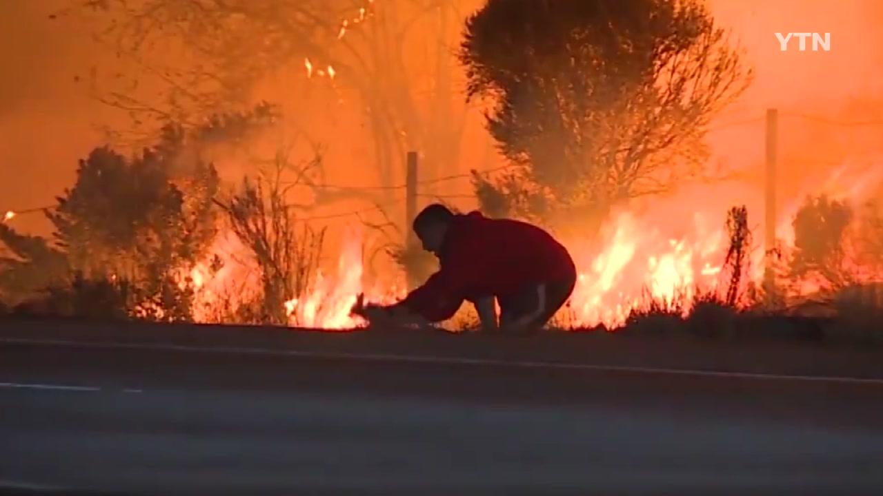 [영상] 산불 속으로 한 청년이 뛰어들어간 이유