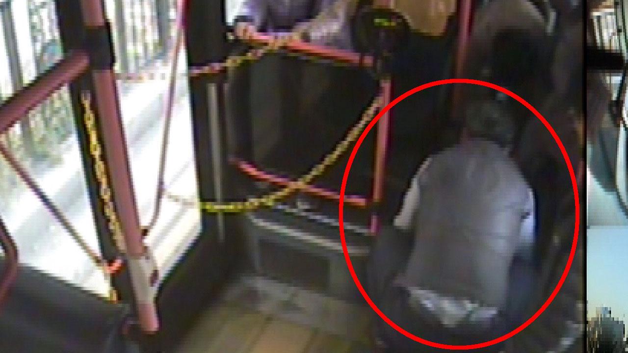 올해 대전서 버스 기사들이 승객 9명 목숨 구해