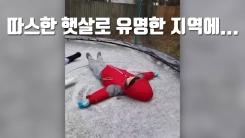 [자막뉴스] 따스한 햇살로 유명한 지역에...29년 만의 눈