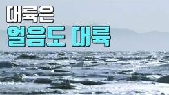 [자막뉴스] 베이징보다 넓은 바다 얼려버린 中 추위