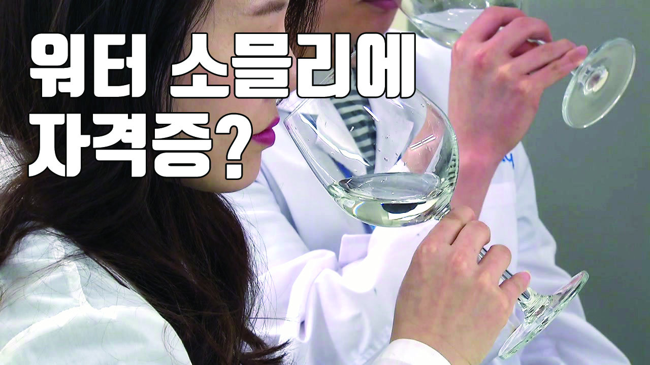 [자막뉴스] '워터 소믈리에', '수납정리 전문가'...유통가 새바람