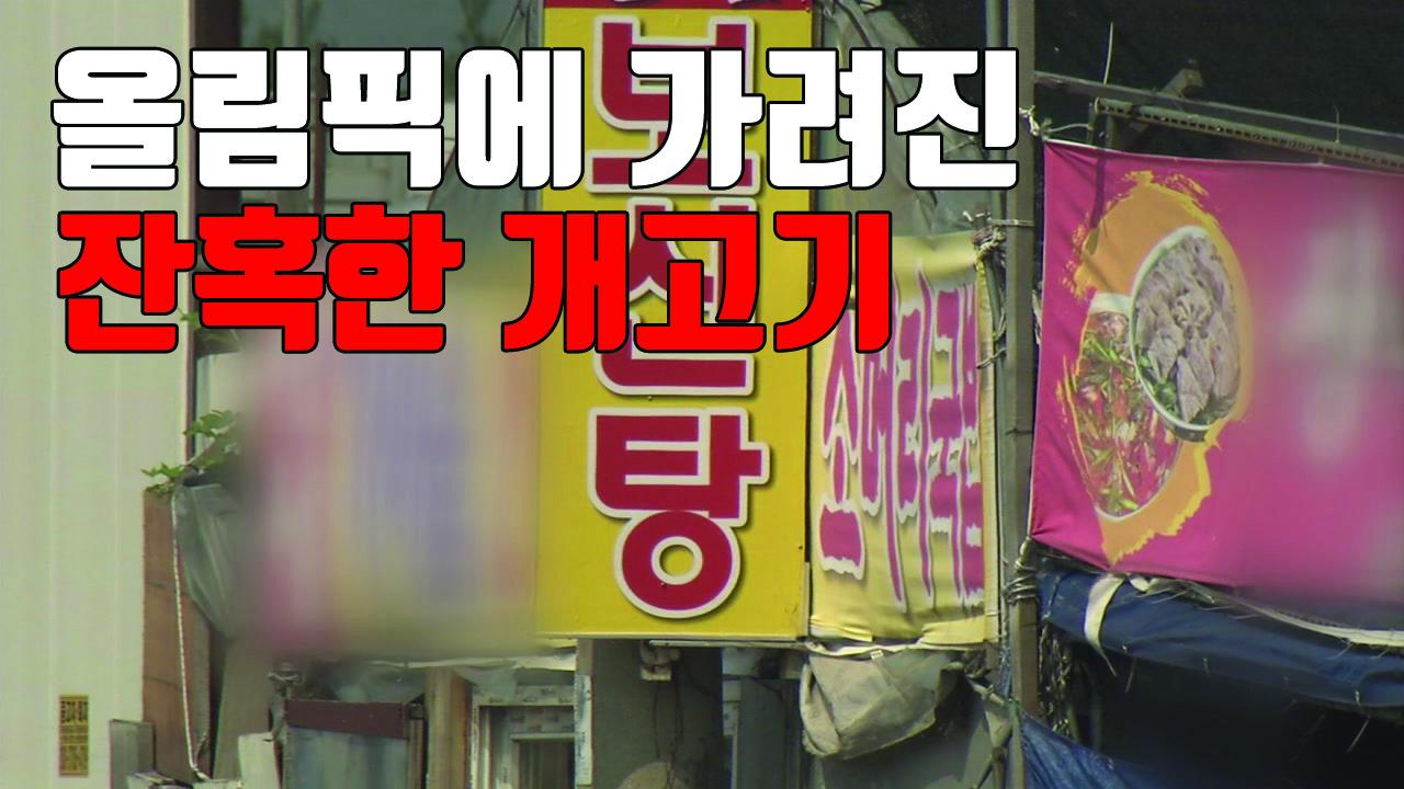 """[자막뉴스] CNN 앵커 """"올림픽에 가려진 잔혹한 개고기 거래"""""""
