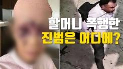 [자막뉴스] LA 할머니 폭행 용의자 석방...진범은 어디에?
