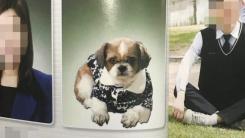 [좋은뉴스] 고등학교 졸업앨범에 등장한 '강아지 직원'
