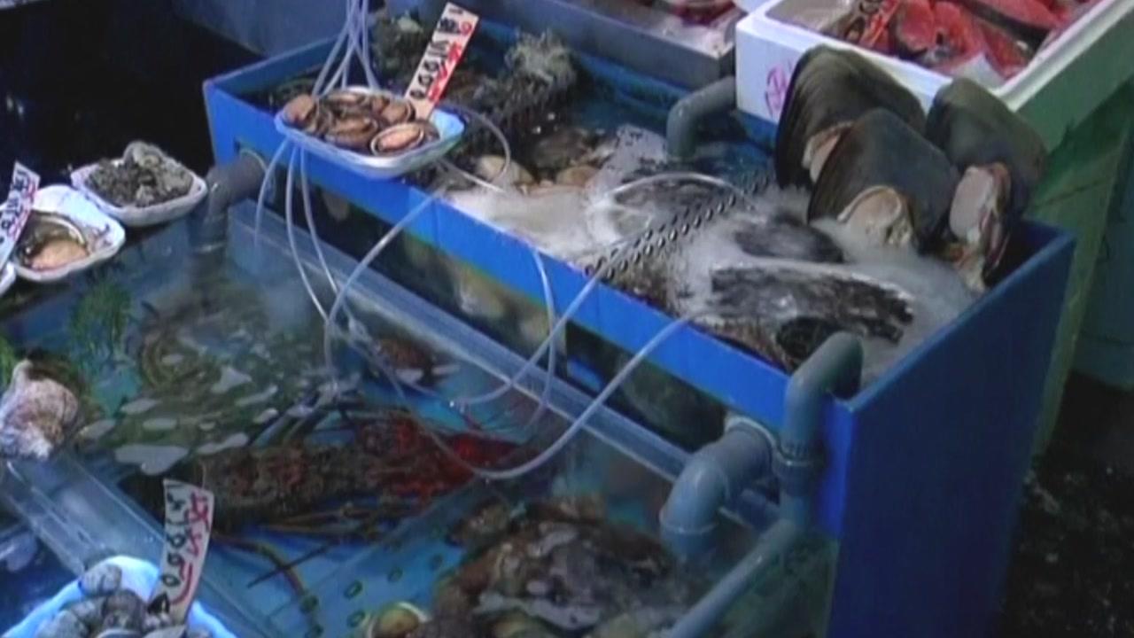 """태국, 시민 반발로 후쿠시마산 생선 """"판매 중단"""""""