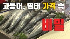 [자막뉴스] 고등어·명태 가격 속 '비밀'