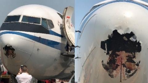 비행 도중 '조류 충돌'로 기체에 거대한 구멍 뚫려