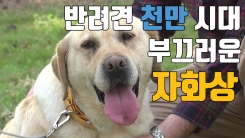 [자막뉴스] 반려견에서 식용견으로...결국은 해외입양