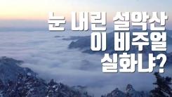 [자막뉴스] 설악산에 내린 눈...봄맞이 마지막 진통