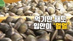 [자막뉴스] 많이 먹으면 사망까지? 확산되는 '패류독소' 뭐길래...