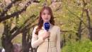 [날씨] 내일 전국 초여름 더위...미세먼지 '나쁨'