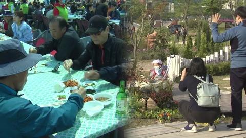 부산에선 멸치 축제, 울산에선 정원 축제 '북적'