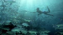 물 속에서 13분간 잠수…인도네시아 '바자우족'