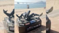 """부산 '블랙팬서' 조형물 또 파손…""""야외 조형물 모두 철거"""""""