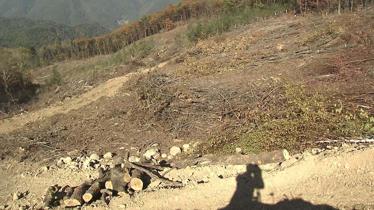 훼손된 가리왕산 스키장...우기 앞두고 산사태 비상