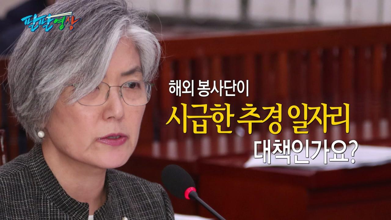 [팔팔영상] 해외 봉사단이 '추경 청년 일자리' 대책?