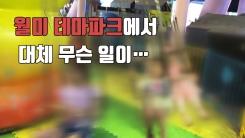 [자막뉴스] 쓰러진 놀이기구...월미테마파크 또 사고
