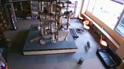 [지구촌생생영상] 10초 전 지진 미리 감지한 고양이들...CCTV 포착