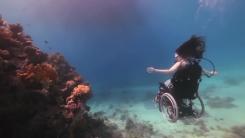 7년간의 준비해온 특별한 '스쿠버 다이빙'