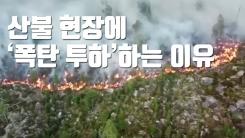 [자막뉴스] 산불 현장에 전투기 출격...'폭탄 투하'하는 이유