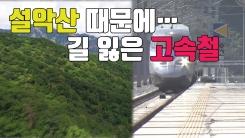 [자막뉴스] '설악산' 때문에...방향 잃은 고속철 노선