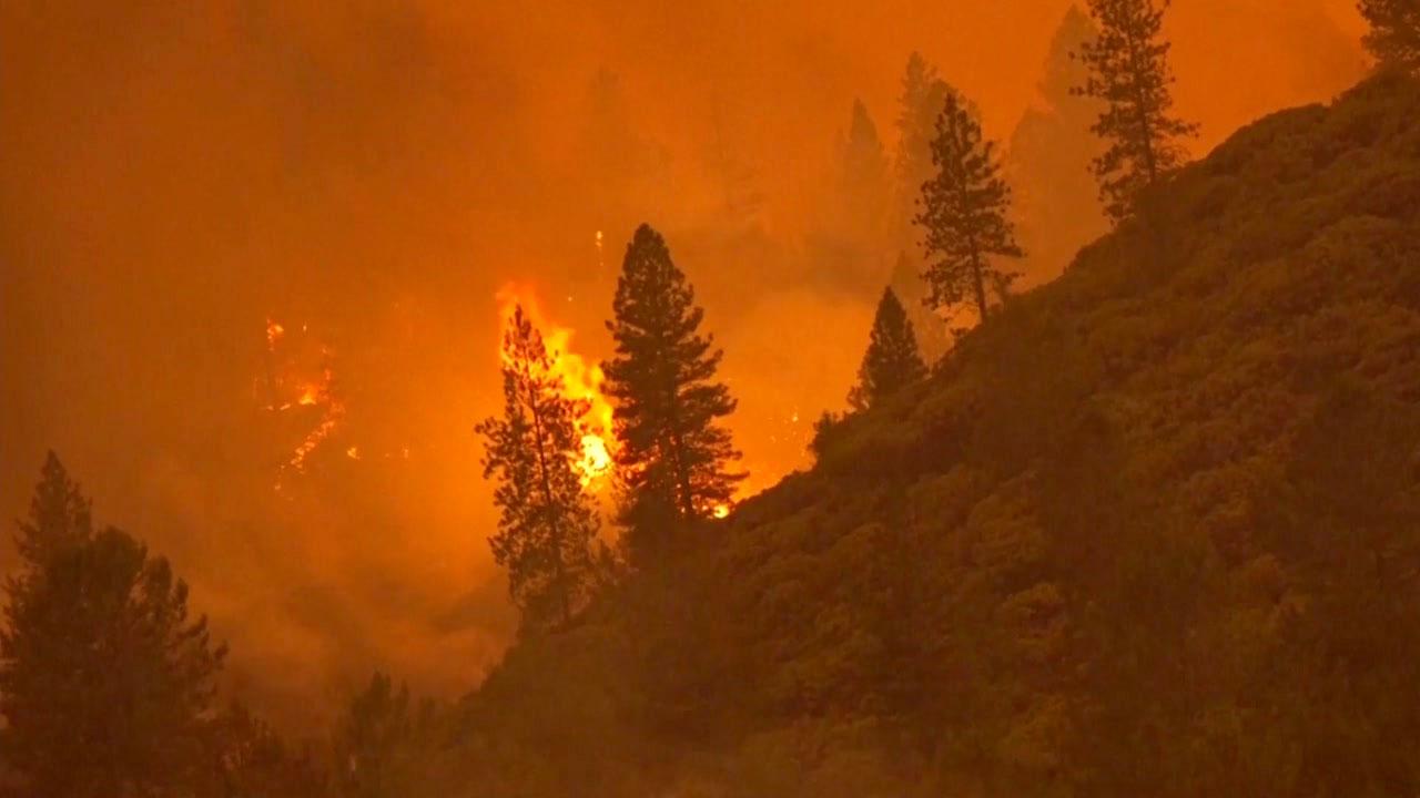 [취재N팩트] 美 산불 재앙 중에 또 불 질러... '괴물' 방화범