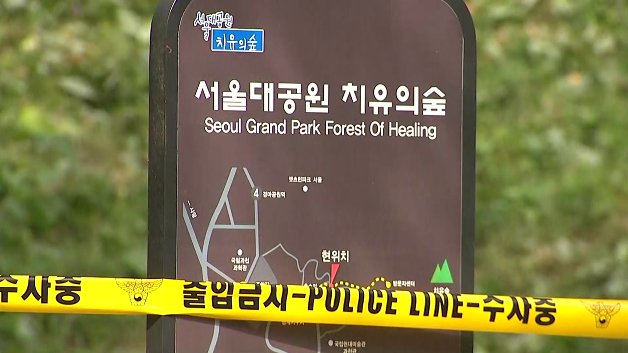 서울대공원 주차장 인근서 남성 토막시신 발견