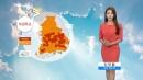 [날씨] 내일도 폭염 기승...이번주 태풍 '솔릭' ...