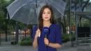 [날씨] 출근길 중서부·전북 비...태풍 모레 한반...