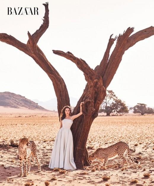 """""""아프리카의 여신"""" 안젤리나 졸리, 치타와 컬래버 _이미지2"""