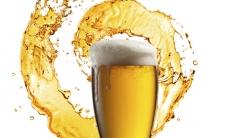 미지근한 맥주를 차갑게 만드는 방법