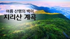 여름 산행의 백미 '지리산 계곡'