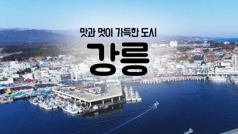 [YTN 구석구석 코리아] 제24회 맛과 멋이 가득한 도시, 강릉