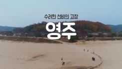 [YTN 구석구석 코리아] 수려한 선비의 고장, 영주
