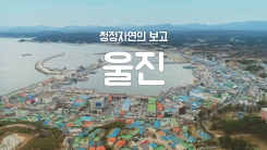 [YTN 구석구석 코리아] 청정자연의 보고, 울진